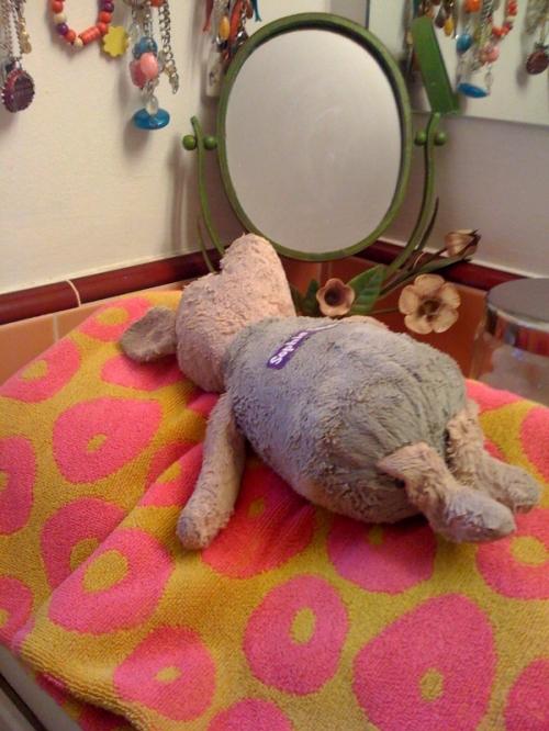 piglet-bath
